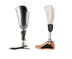Lower Leg Prostheses
